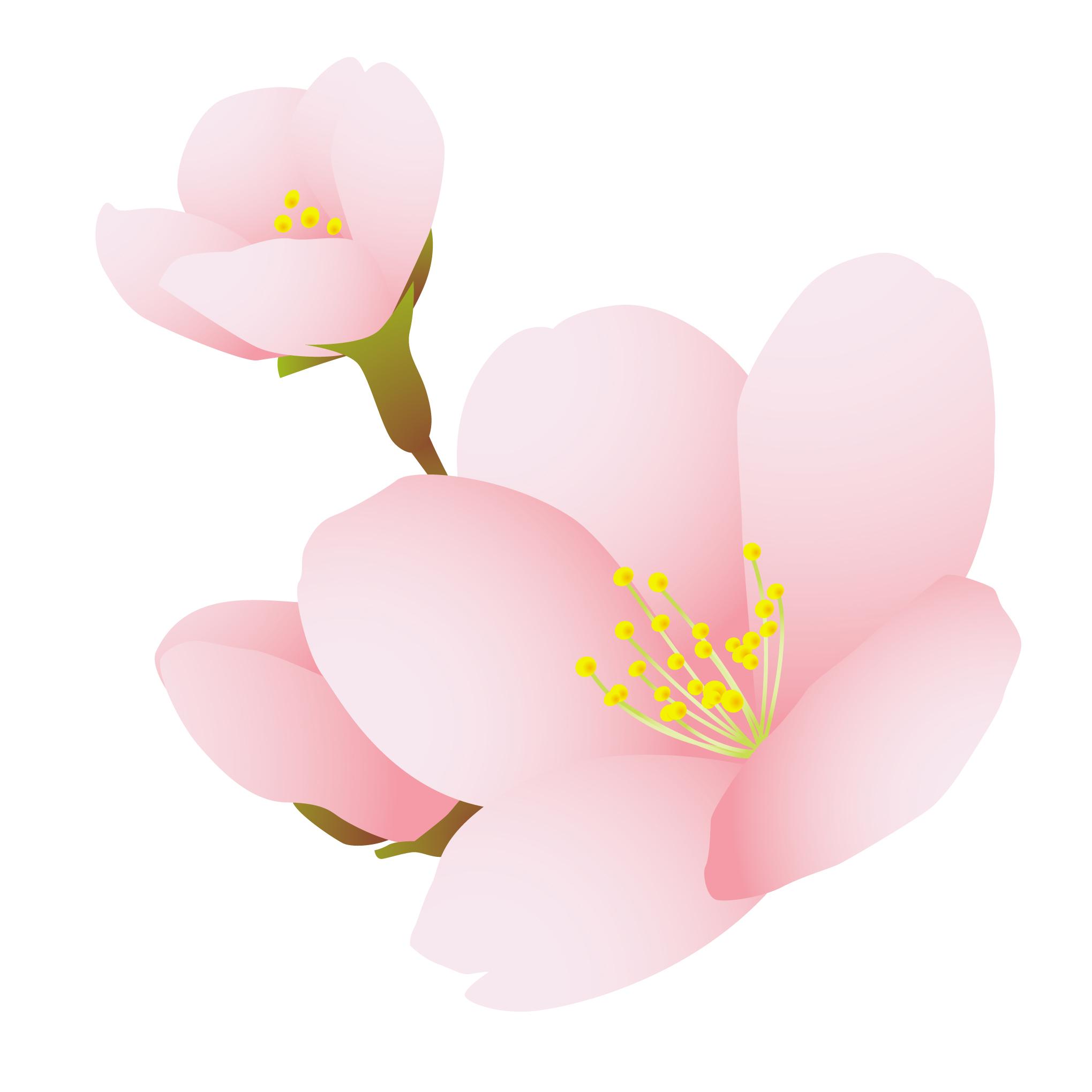花のイラスト 無料 てつお使えるイラストぷらす : 【随時更新】和風な