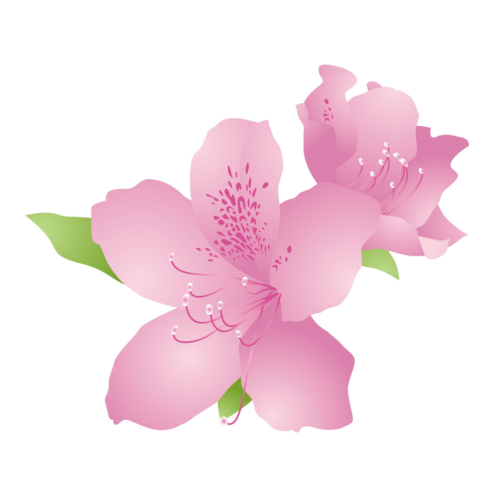 花のイラスト 無料 4月