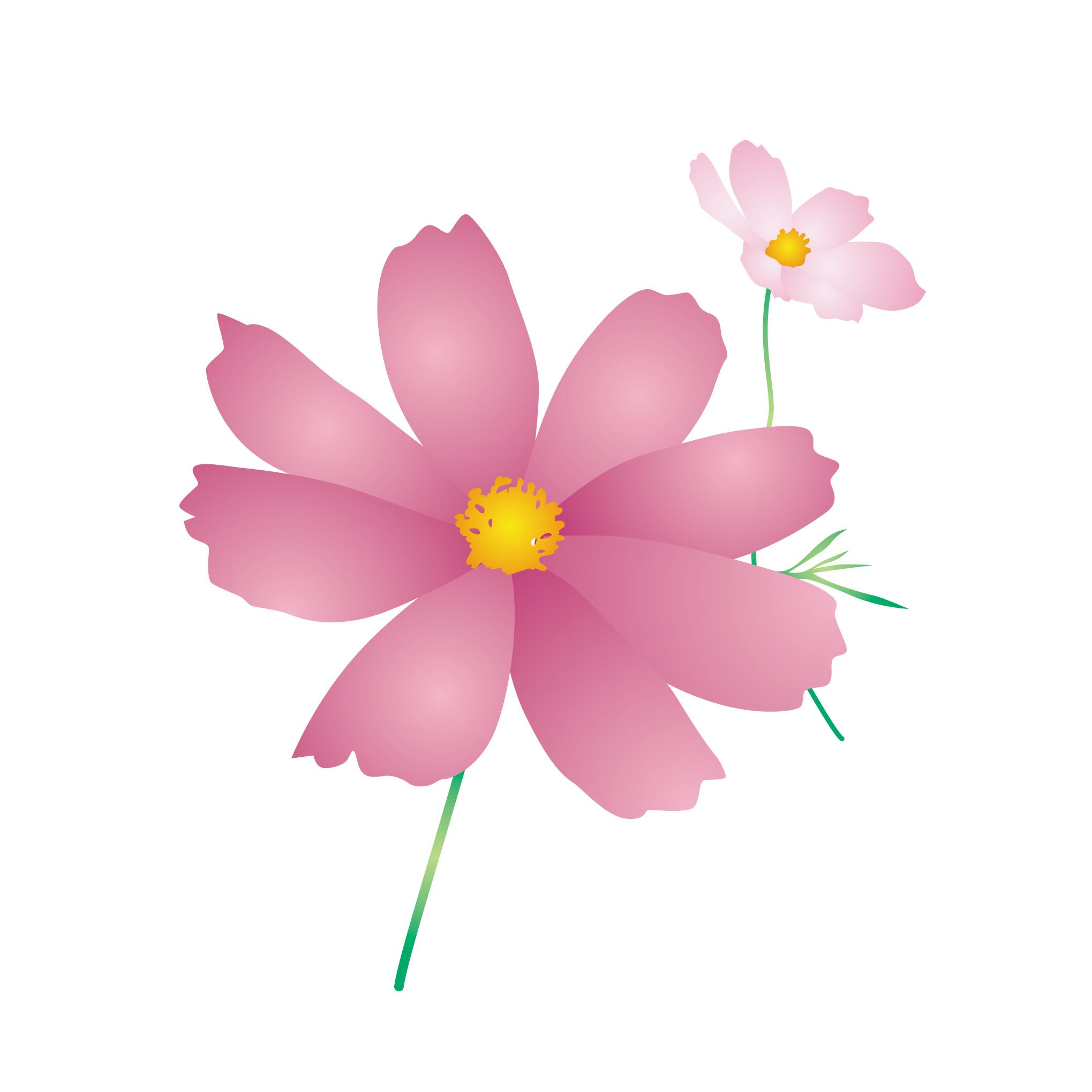 花のイラスト 無料 秋の花